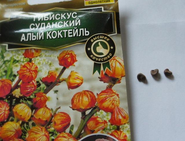 Гибискус семена